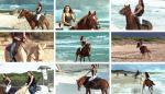 Beachcombers_2