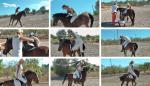 Next_Lady_same_Pony