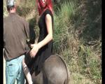 SP_Donkey_Riding_Workshop