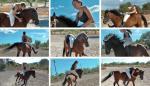 Pony_Relaxant